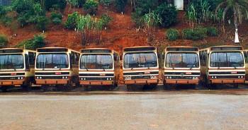 Frota ônibus Amélia